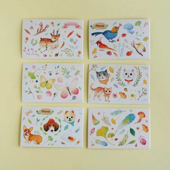 Illustrated Water Colour Animal Cards